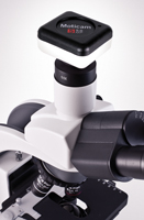 5MP Camera on Compound Microscope